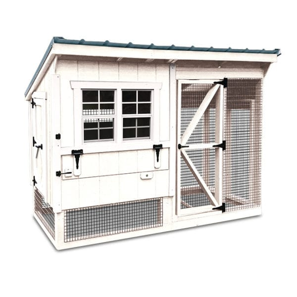 white chicken coop with blue roof two windows, chicken run, nest boxes egg access in front